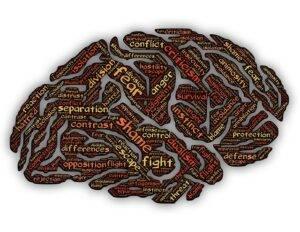 shame embedded in a brain